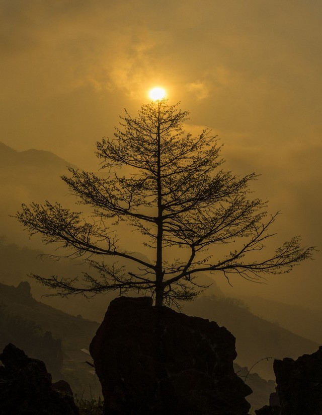 New day looking from Ham Rong mountain - Photo THANH TOAN
