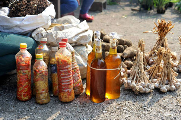 Forest honey, pickled bamboo shoot with chili, garlic ... are items that can be bought as gifts