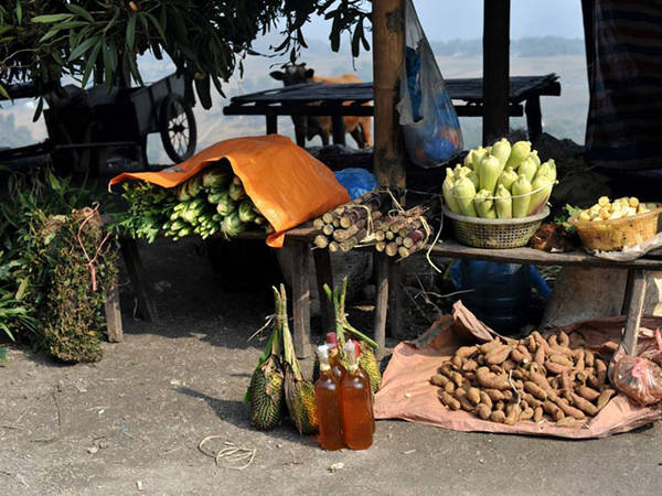 Here, visitors can buy many specialties from forest, which is difficult to find in the delta