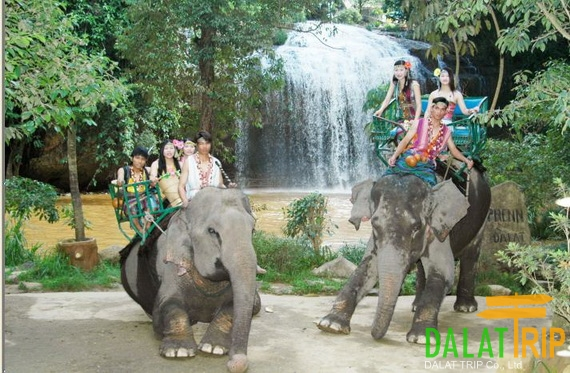 Elephant ride at Prenn waterfall