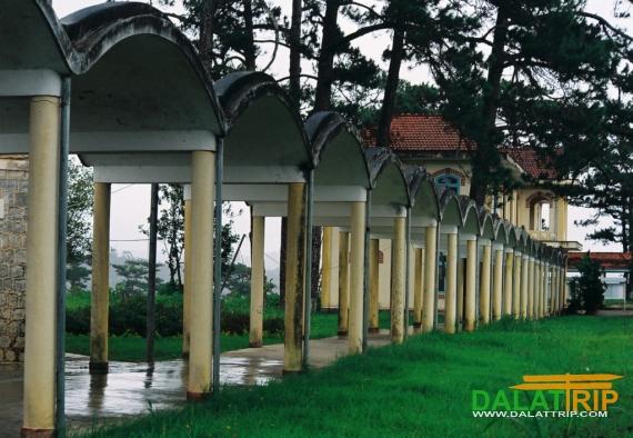 Dalat College