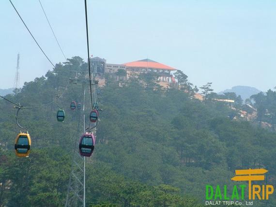 Robin hill Dalat