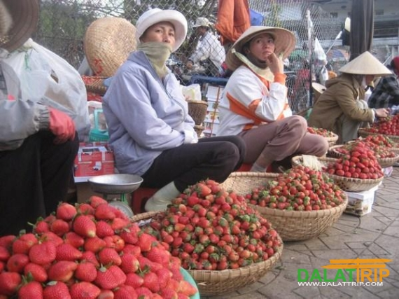 Strawberry in Dalat Market