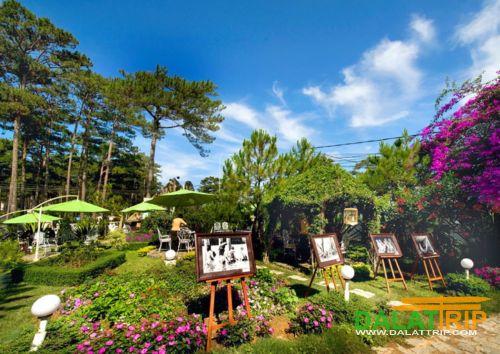 cadasa cafe garden