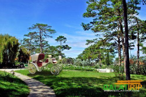cadasa resort garden