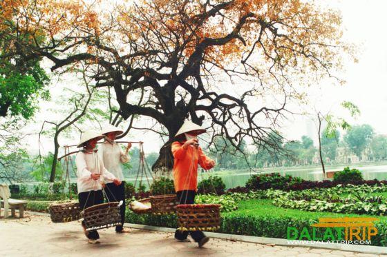 Routes: Hanoi – Dalat