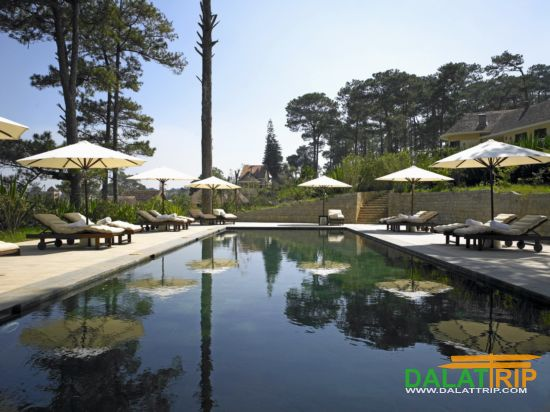 Dalat has 2 Winners of The 2012 Gold Circle Awards