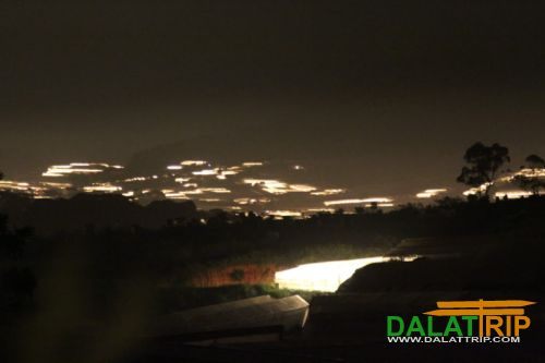 Dalat Farms at night
