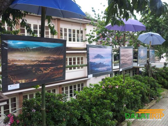 Artistic Photo Exhibition & Summer Festival of Dalat Vietnam 2013