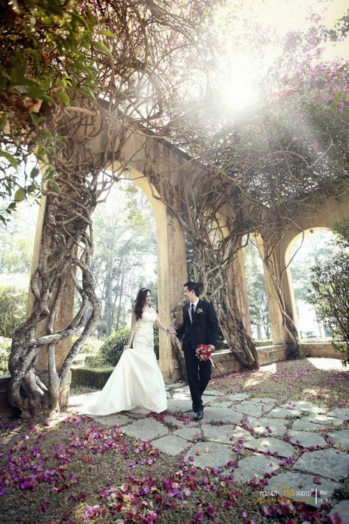 Outdoor Pre-wedding Dalat Vietnam 10