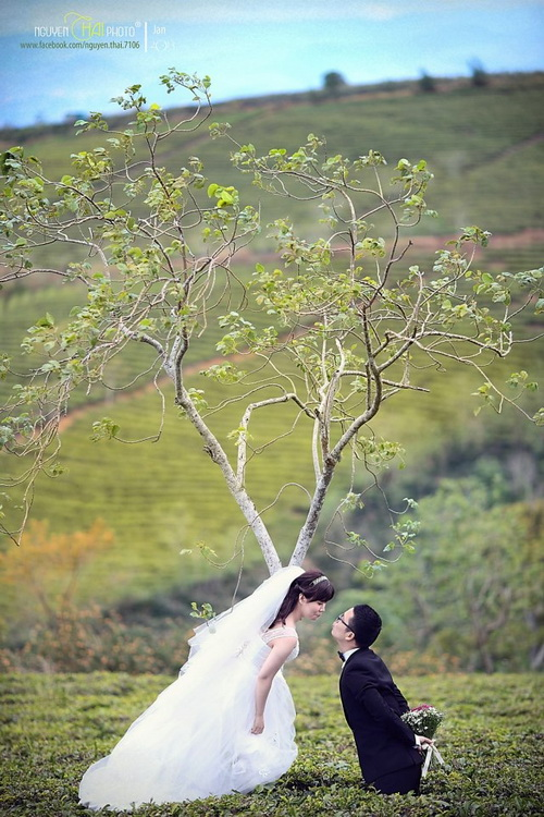 Outdoor Pre-wedding Dalat Vietnam 12