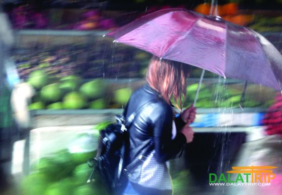 Photo exhibition about Dalat rain