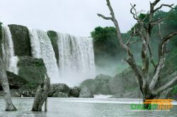 Bao Dai waterfall in the wilderness of Dalat