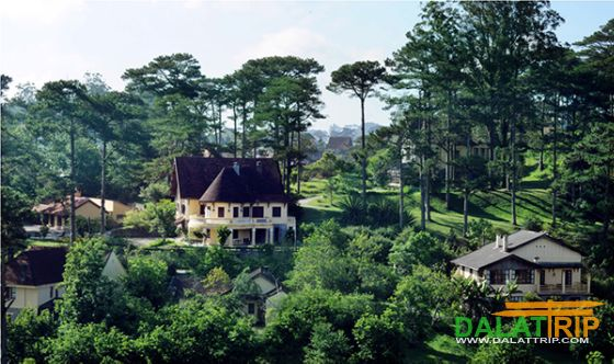 beauty of Dalat