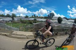 Getting around Dalat