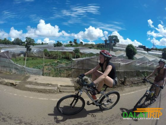 by bicycle in dalat