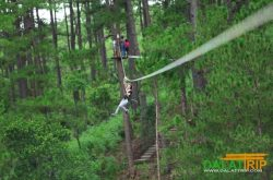 high rope course in Dalat