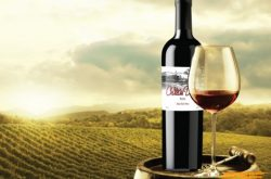 Dalat wine in its integration advances