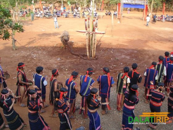 New Rice Festival of K'Ho people