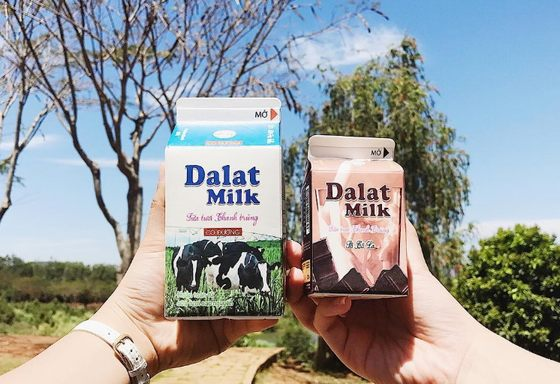 fresh milk products of Dalat milk