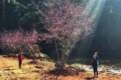 Hoa Son Dien Trang tourist site