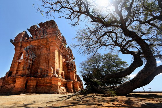 Dalat to Phan Rang tour in 1 day