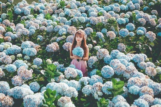 As princess lost in the forest of flowers