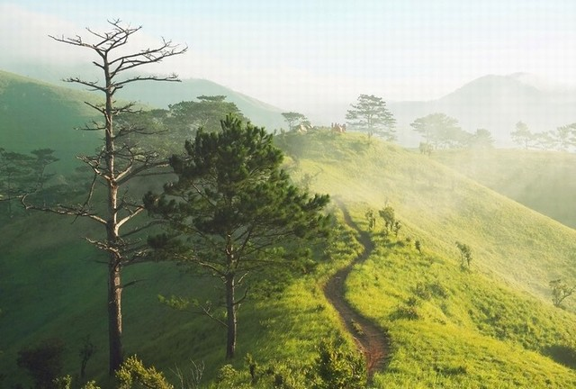the most beautiful trekking trail in Vietnam